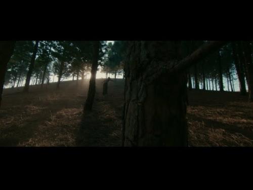 Fireboy DML & D Smoke - Champion (Official Video)