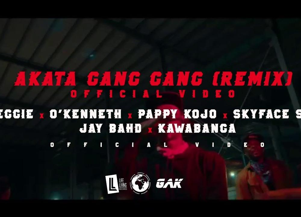 Reggie - AKATA GANG GANG Remix ft O'Kenneth, Pappy Kojo, Skyface SDW, Jay Bahd & Kawabanga (Official Video)